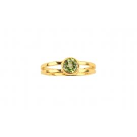 Julia ring